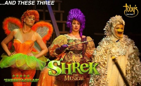 (from l to r) Sugarplum Fairy (Heather Beck), Fairy Godmother (Tina DeSimone), and Ugly Duckling (MaryKate Brouillet).